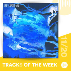 Tracks of the Week 11/20: Nils Hoffmann - 1.16699016 x 10^-8 hertz & Once in a Blue Moon